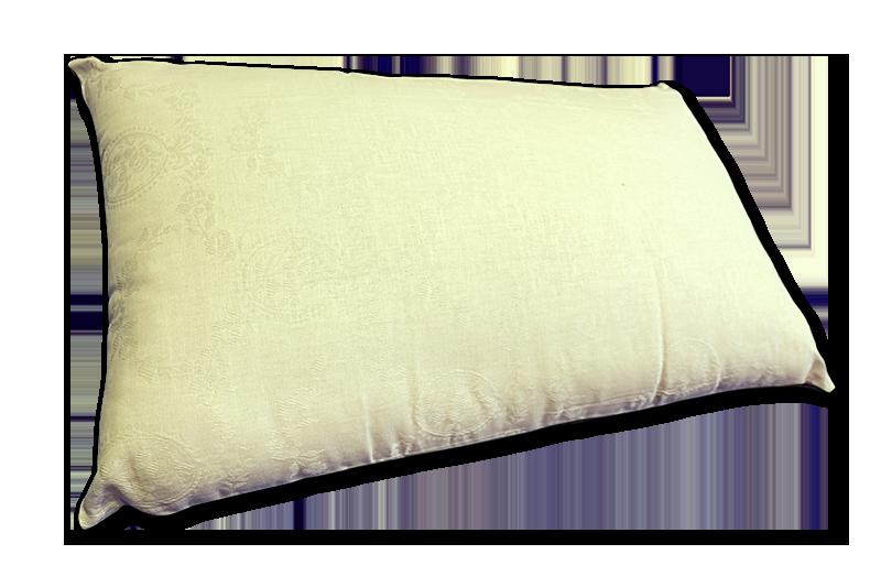 cuscino bio